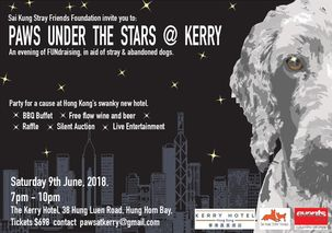 Paws Under the Stars @ Kerry 